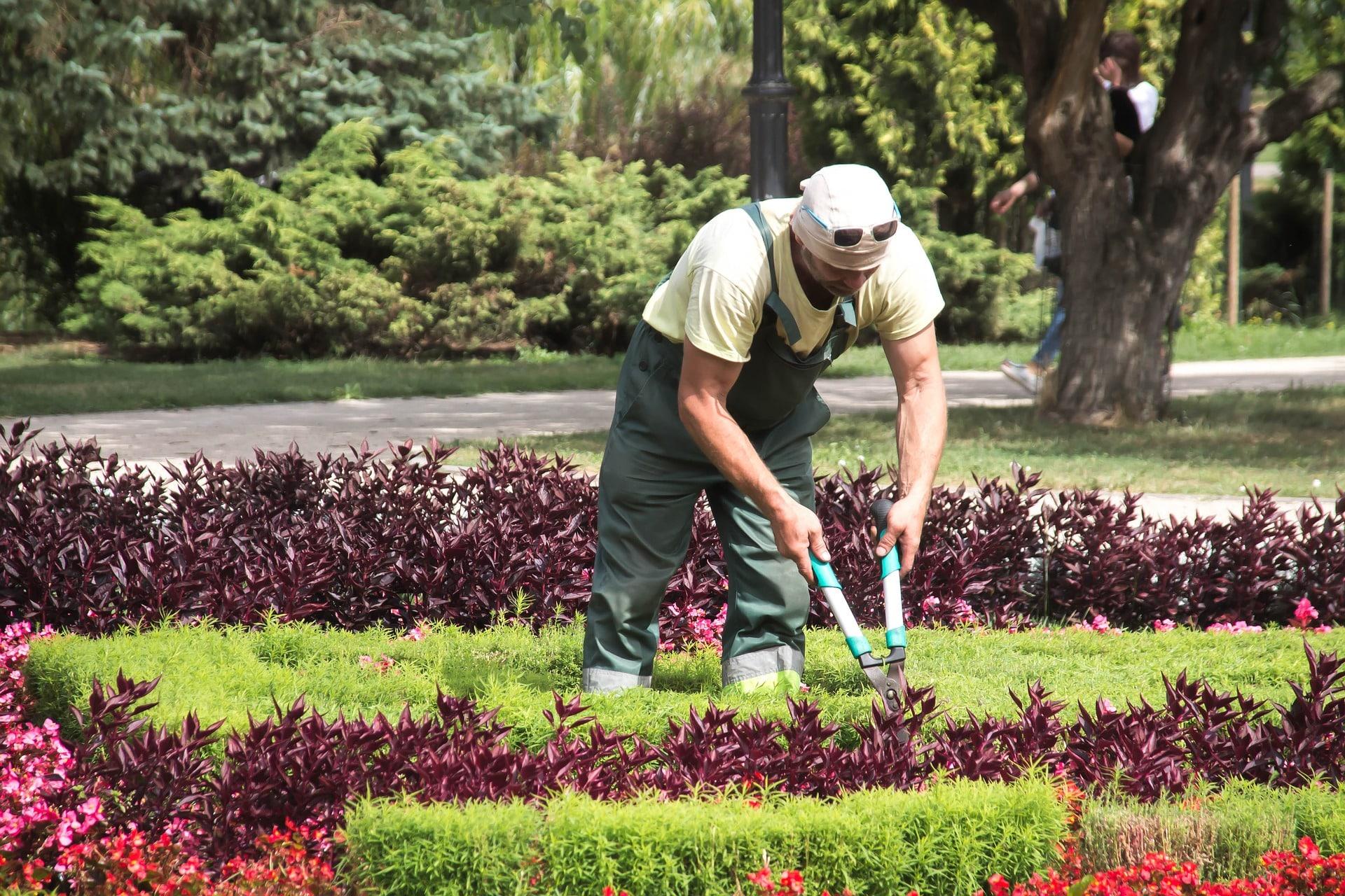travailler comme jardinier