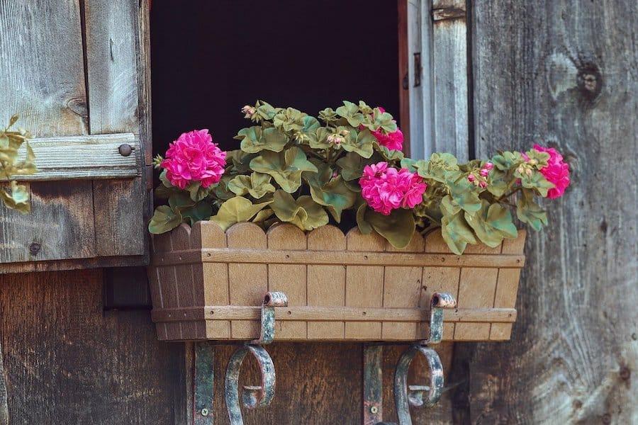 comment choisir de la terre pour jardiniere
